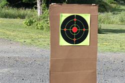 #30291 Target Hound